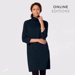 J. Jill Navy Blue Easy Turtleneck Sweater Dress